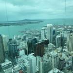Auckland8