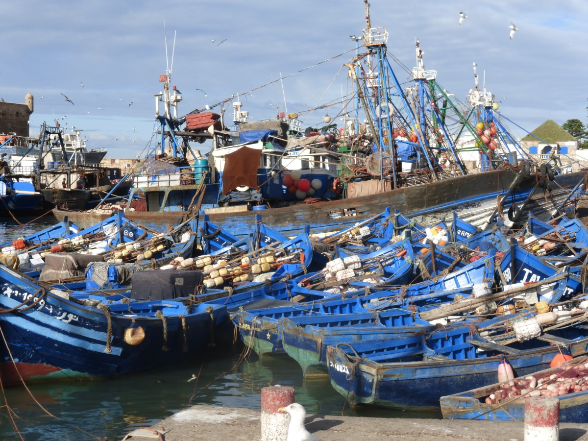 Essaouira-Port