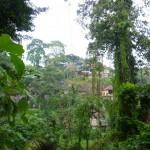 Bali5