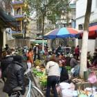 Hanoi-Halong-Bay11